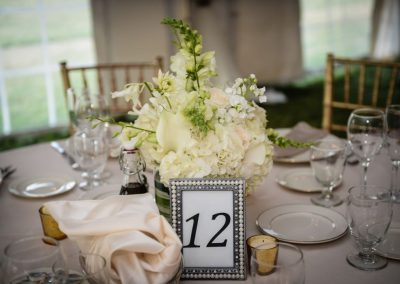 Table Setting in the Tent
