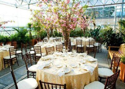 Botanical Center setting