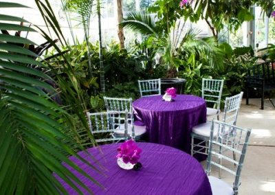 Tables set up in the Botanical Center