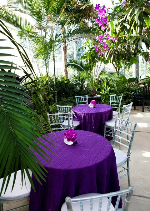 High Quality Tables Set Up In The Botanical Center